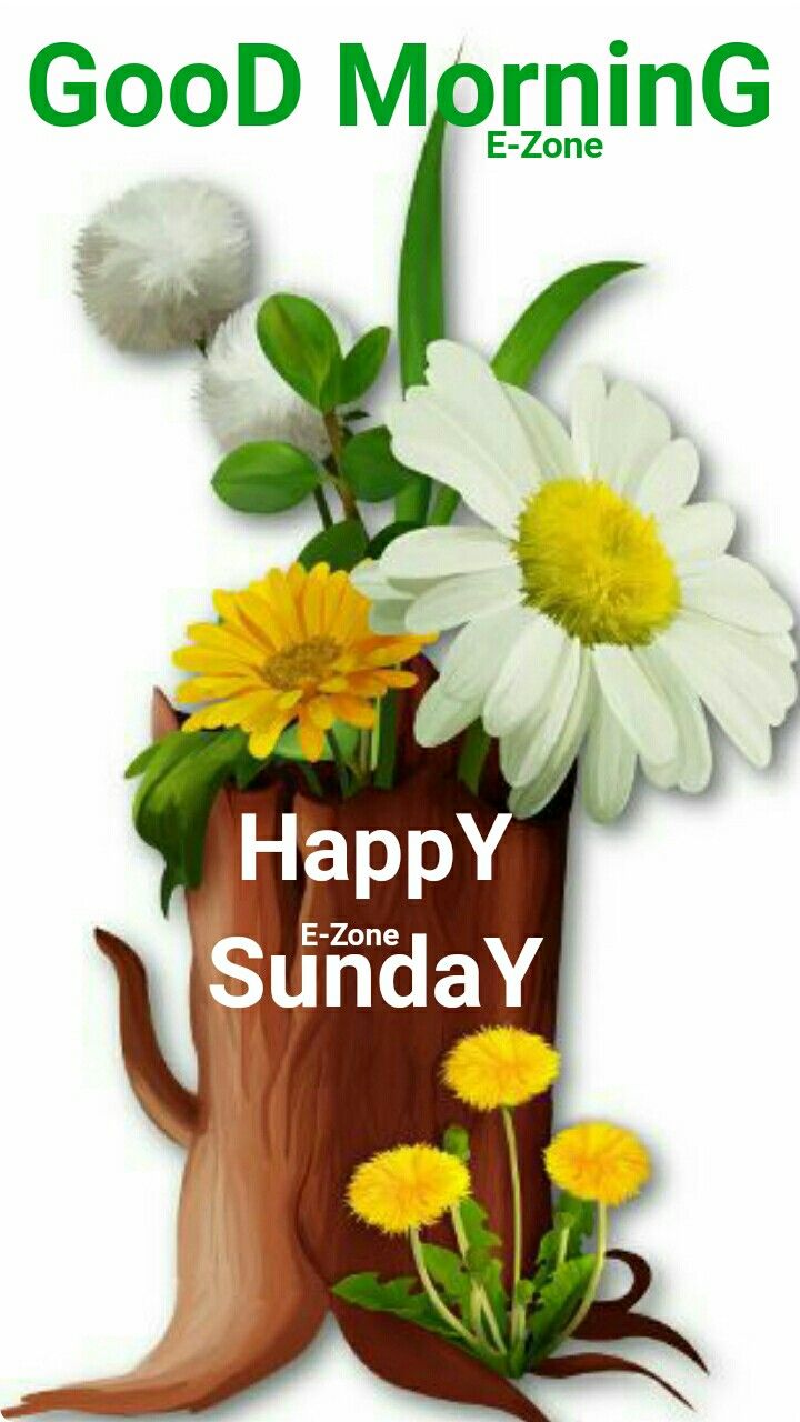 Good Morning Good Morning Gif Happy Sunday Quotes Sunday Greetings