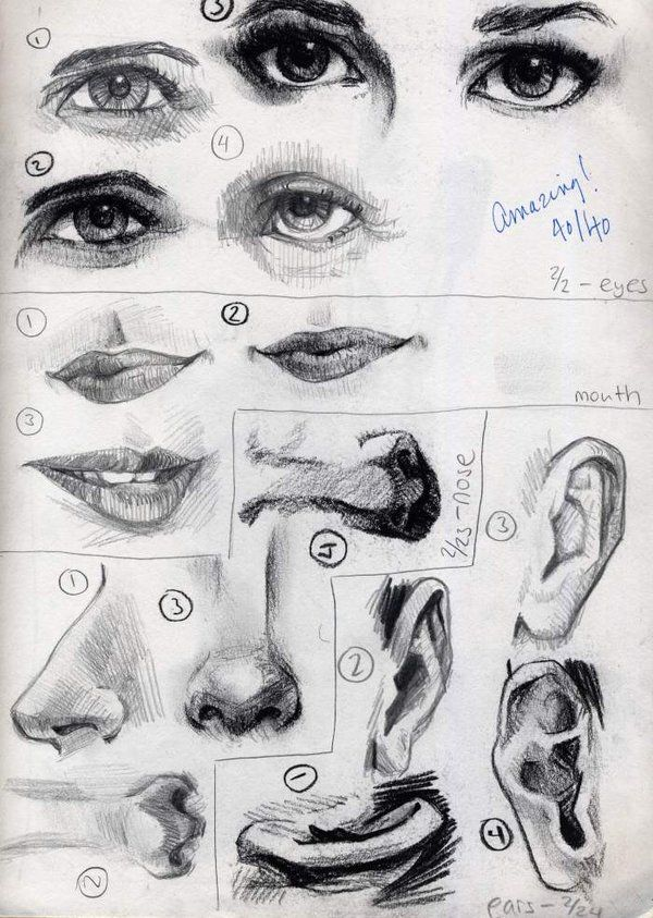 Charcoal - Facial Features by ~Cat-s-Art on deviantART