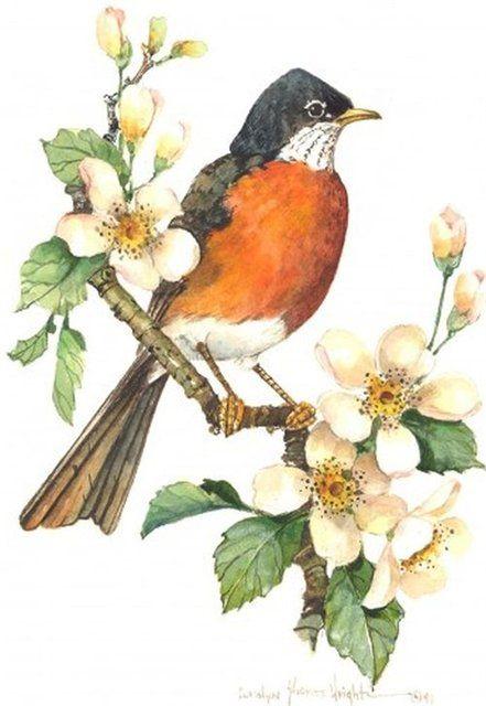 #handmade #vintage #flowers #ручная_работа #винтаж #цветы #винтажные_картинки #vintage_pictures #своими_руками #птицы #birds