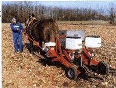 O Trator - Máquinas Agrícolas - Evolução e Uso de tratores na agricultura. Aloísio...