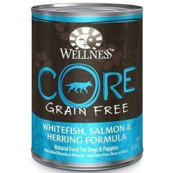 Wellness CORE Grain Free Salmon, Whitefish & Herring Natural Wet Canned Dog Food, 12.5-Ounce Can (Pack of 12)
