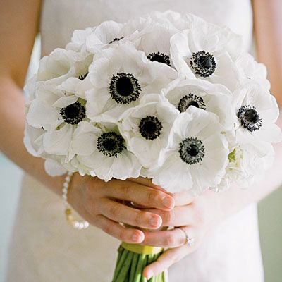 Black and white anemones: White Flowers, White Anemones, White Wedding, Black And White, Wedding Bouquets, Wedding Flowers, Anemones Bouquets, White Bouquets, Bridesmaid Bouquets