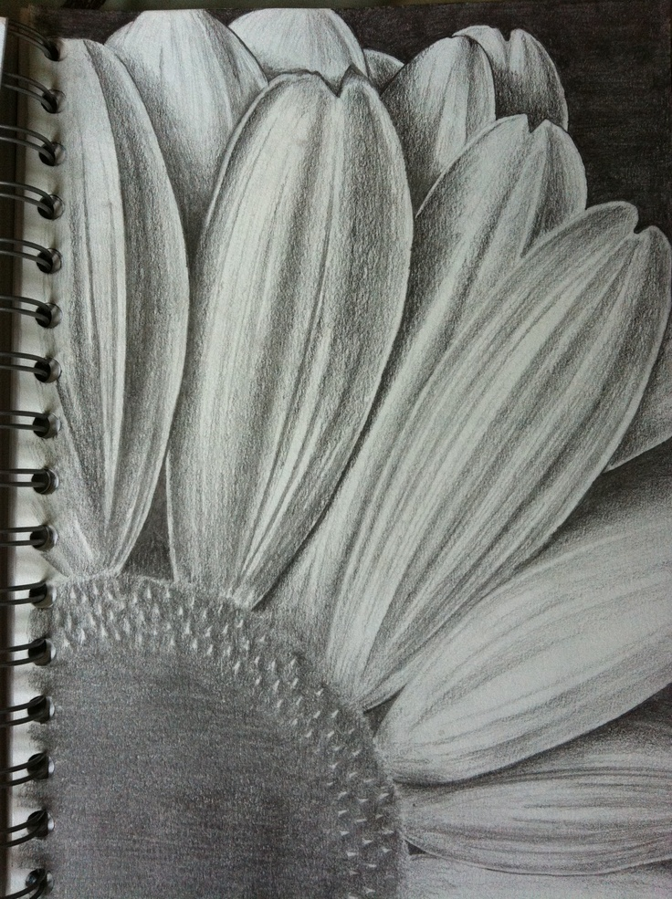 Flower by Laura Gunning. Glasgow based artist. I do commissions. You can contact me at lauragunning0@gmail.com