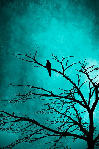 "On the morrow he will leave me, as my hopes have flown before."" Then the bird said, ""Nevermore."""