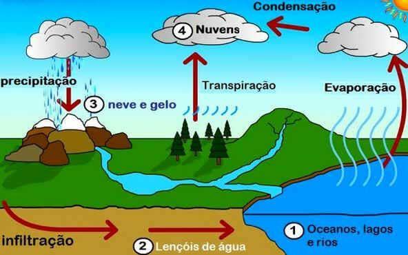 Ciclo Da Agua Processo Etapas Ciclo Da Agua Ciclo Da Agua Atividades Sobre A Agua Ciclo Da Materia