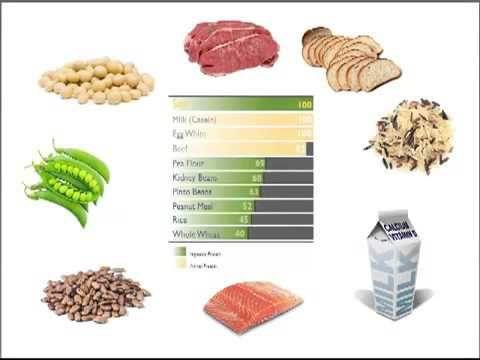 Forever Lite Ultra excelente proteína a base de soya y alga espirulina