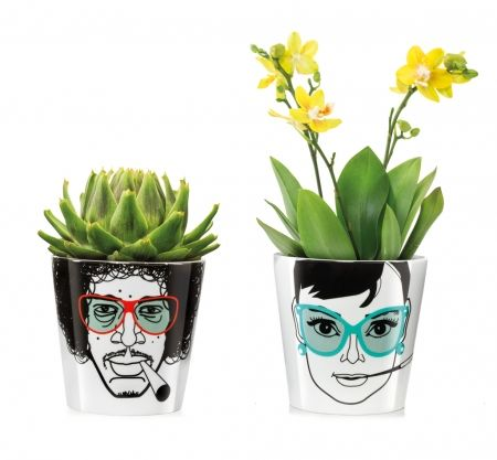 Donkey Products flower power plant pots - for my boys