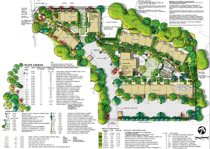 Affortable rental cohousing: The Cohousing Company – McCamant & Durrett Architects » Petaluma Avenue Homes