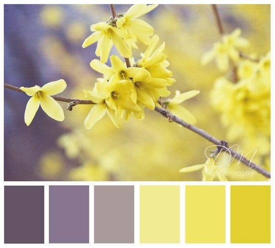 Different color scheme for bedroom.  Yellow, gray, purple.