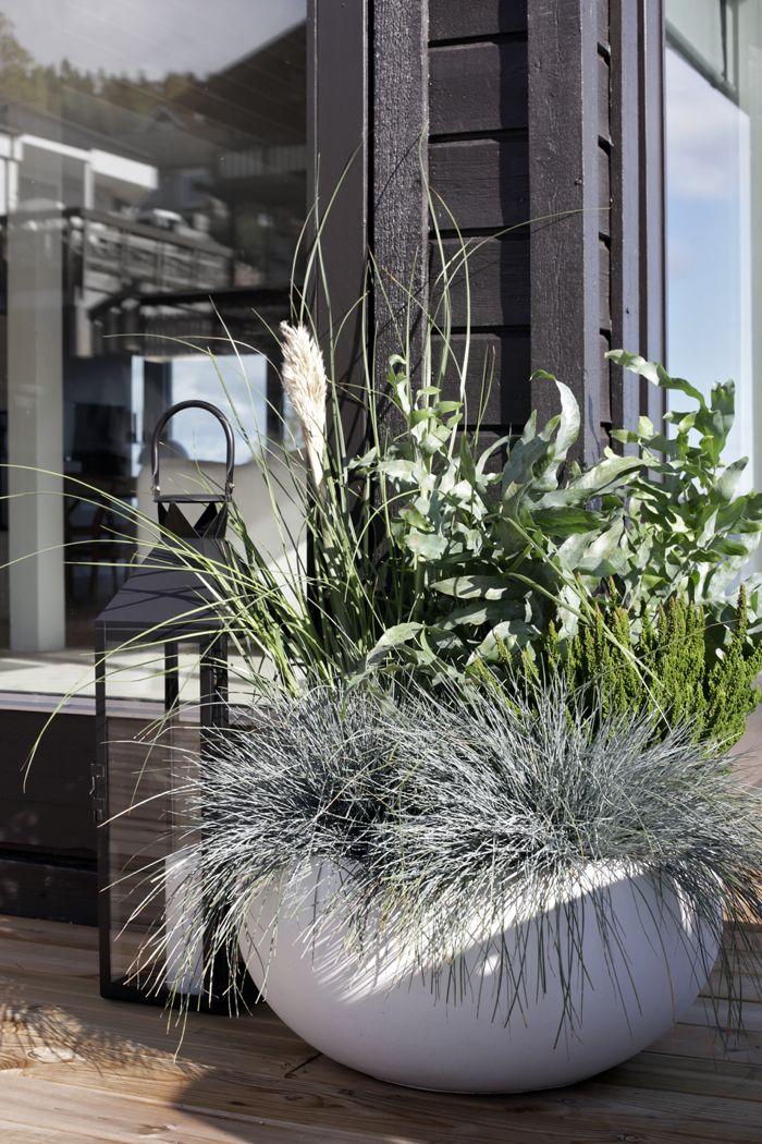 Stylizimo / Green Friday  // #Architecture, #Design, #HomeDecor, #InteriorDesign, #Style