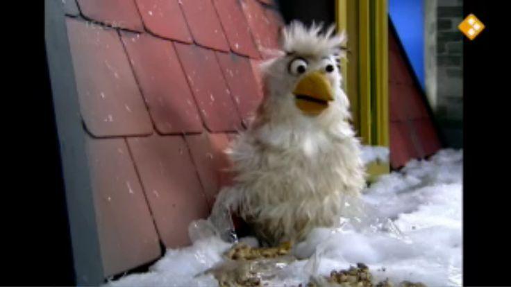 Thema: Winter & Natuur. Dieren krijgen in de winter een wintervacht. Lucht isoleert en houdt warmte vast. Hoe zit dat met Raaf?