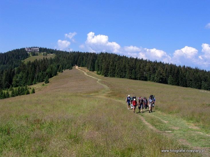 Turbacz (1310 m)- najwyższy szczyt Gorców. Długa Hala i schroniska PTTK na Turbaczu