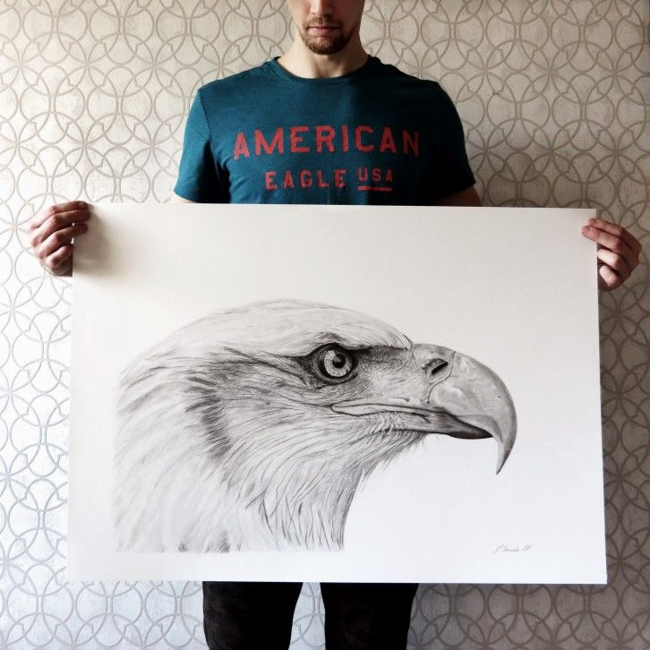 Pencil drawing, American eagle #art #drawing