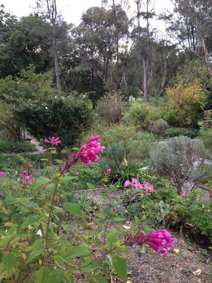 Sunday Reed's garden, Heide MOMA, Melbourne.