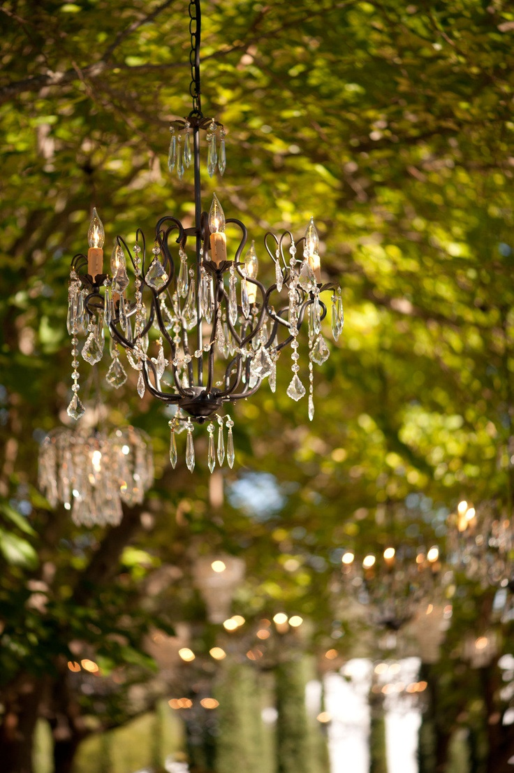 Napa Valley Wedding At Black Swan Lake By Custom Event Group. Outdoor  ChandelierChandelier IdeasOutdoor ...