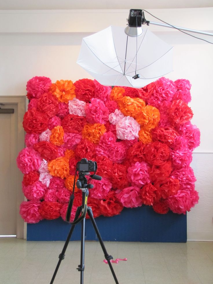 Tissue paper flower backdrop, I never would've thought of this! How cool!
