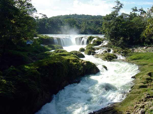 "Amazing Nature!! ""Agua Azul"" waterfalls in Chiapas southeast Mexico!!  #IwannagotoChiapas http://gotomexico.co.uk/"