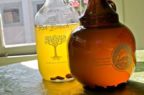 Recipe for Sima, a very easy, slightly alcoholic fermented lemonade. A traditional spring drink in Finland.