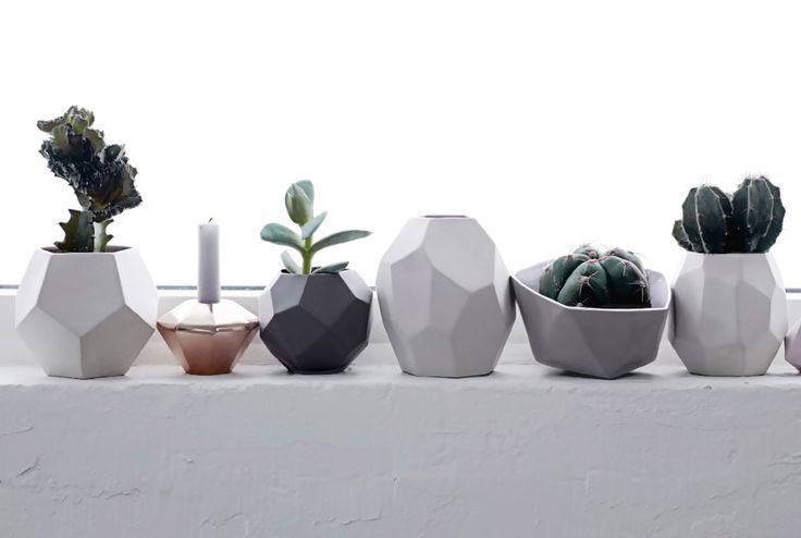 Pots pour cactus et succulentes - Bird on the wire www.botw.fr