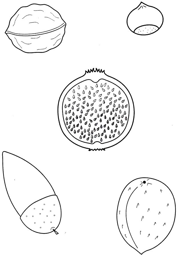 Ms de 25 ideas increbles sobre Dibujos de rboles en Pinterest