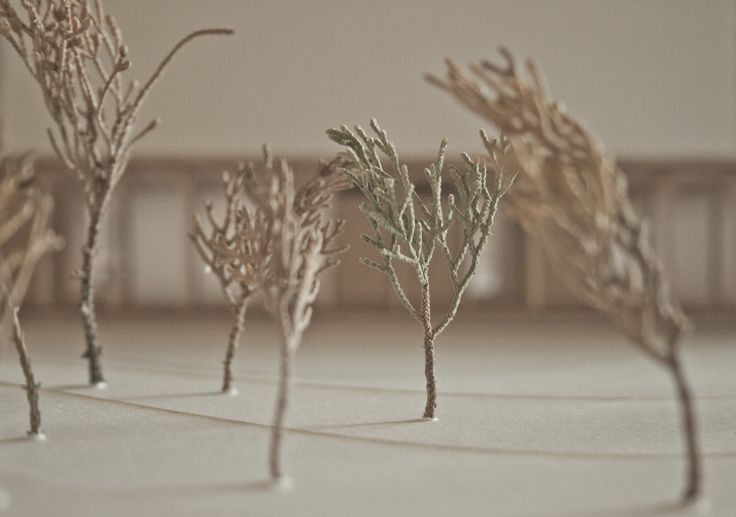 Architecture model. Natural tree. #architecture #model