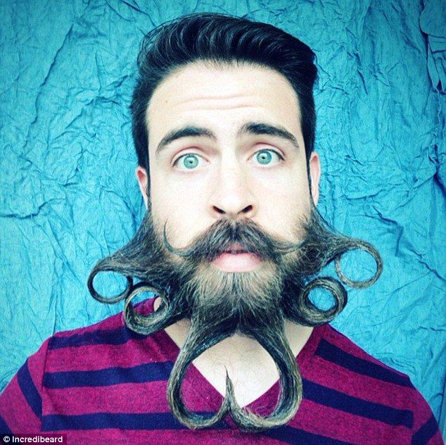 Best Incredibeard Images On Pinterest Design Hair And Humor - Mr incredibeard really coolest beard ever seen