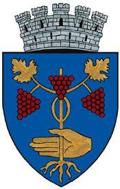 Hotararea nr. 827/2007 privind aprobarea stemei municipiului Medias, judetul…