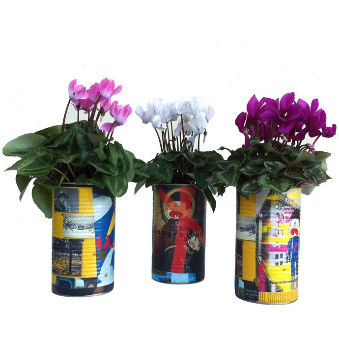 Handmade collage cans with cyclamen www.fleria.gr