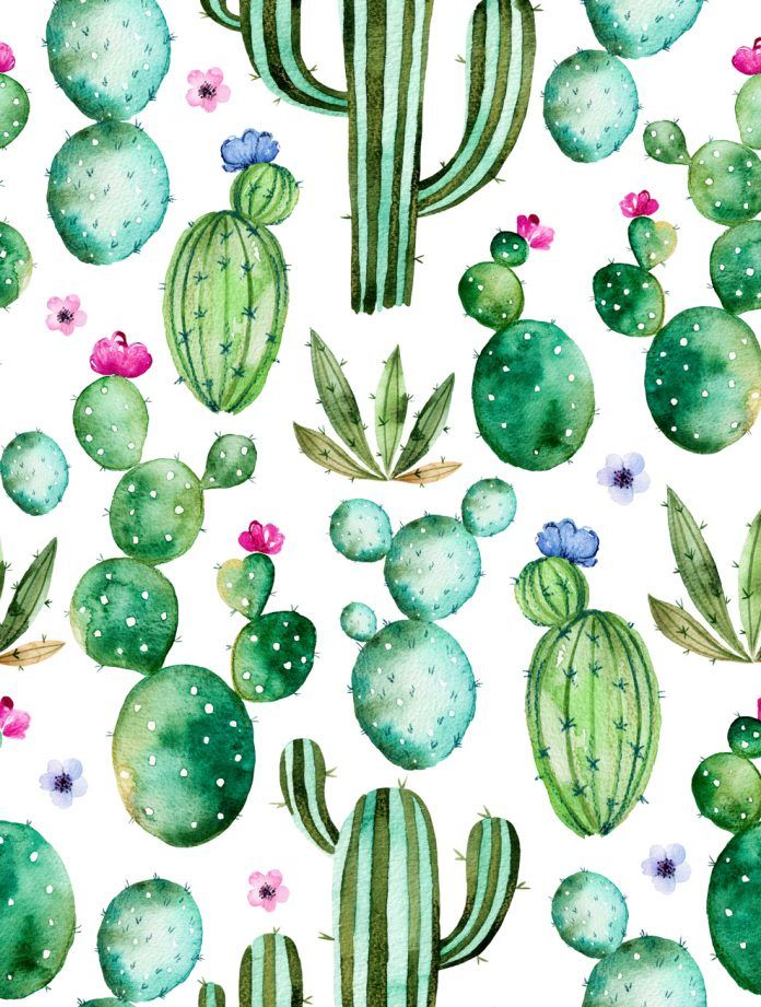 50 Floral Background Ideas Hd Watercolor Cactus Pastel