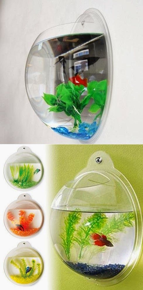 Beautiful Fish Bubble. For the kids room, would be great because they can look but not touch (or pour an entire container of fish food in..)