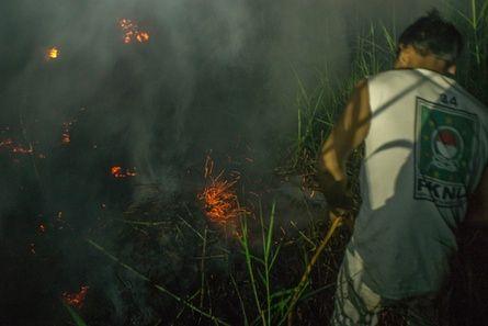 Members of the local community help extinguish peatland fires in Kapuas