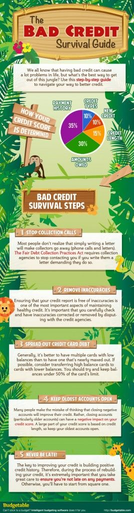 Living with bad credit is like being lost in a jungle. You know that you are in financial danger, but it is hard to see your way out. The Bad Credit Survival Guide gives a step by step guide to escaping the bad credit jungle and our credit repair reviews