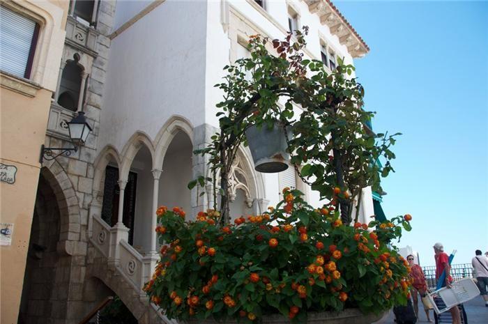 Roc de San Gaieta (Tarragona), İspanya. Rus Servis Çevrimiçi Diaries - LiveInternet üzerine tartışma