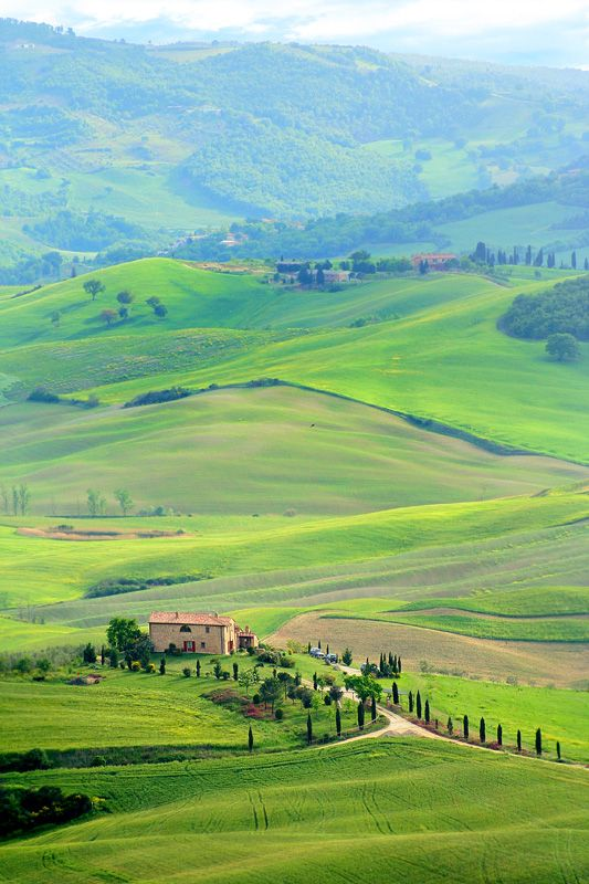 Montepulciano, Siena.....wasn't quite this green when I was there in the heat of summer but oh, was it beautiful. Remember that morning so vividly....