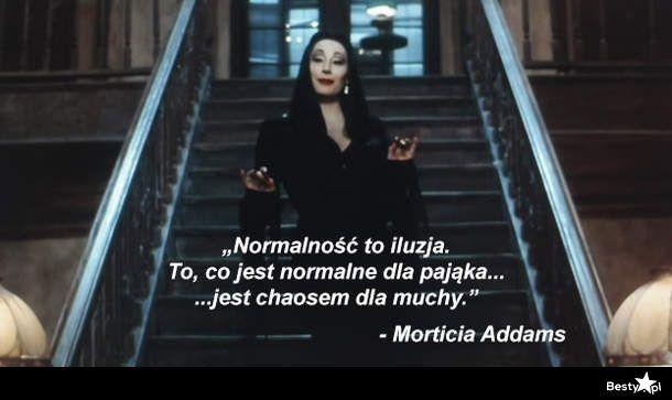 BESTY.pl - Normalność to iluzja
