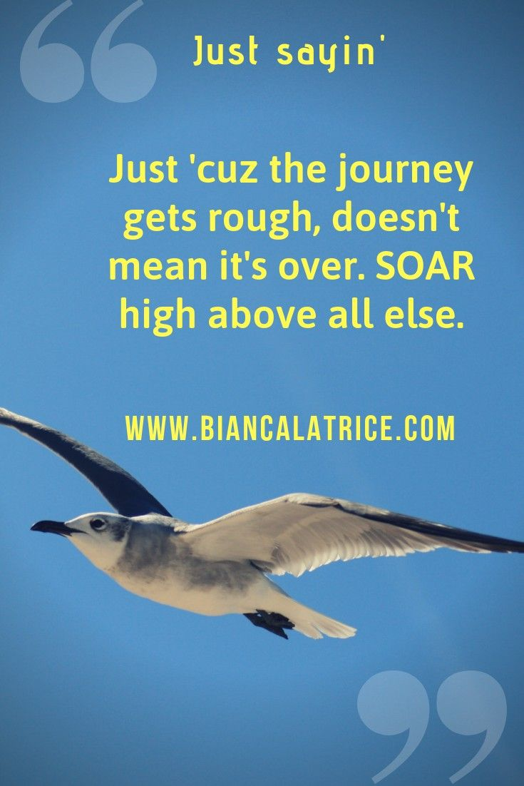 Journey Soar High Above The Journey Gets Rough There S A Light At The End Positive Quotes Aspiration Quotes Inspire Others