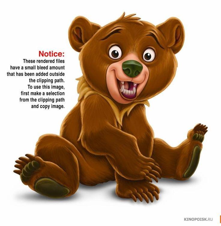 Фото: Братец медвежонок