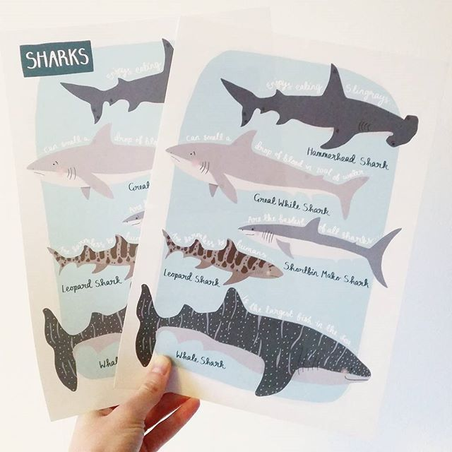 Restocked some of my prints and managed to order the wrong version of my Sharks print! (It's supposed to say sharks in the left hand corner like the print on the left... oops!) So I have 50 of these and am offering them to you lot for just 6  1.50 p&p just leave me a comment if you'd like one