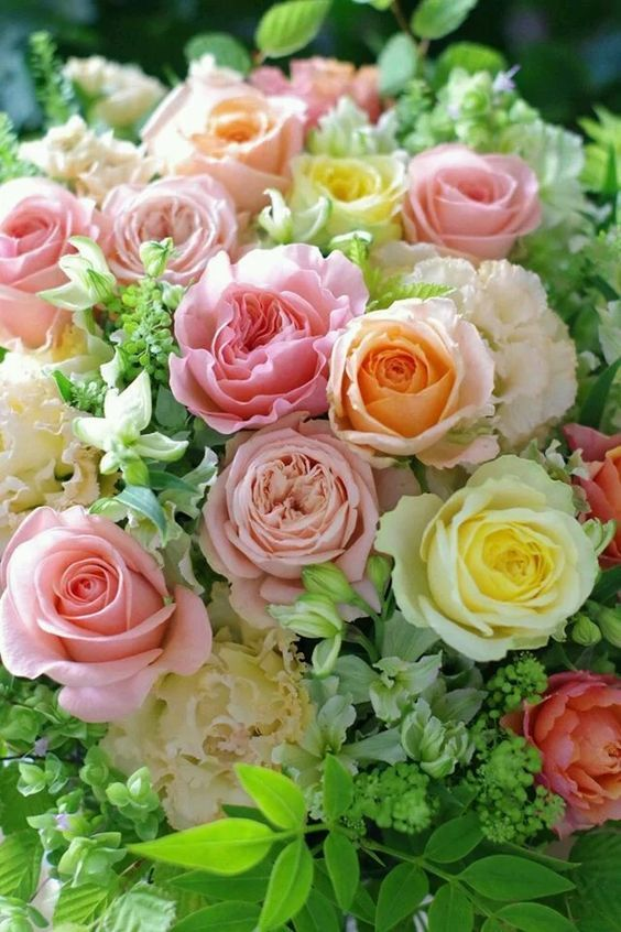 Pale peach, pink, and yellow rose bouquet.
