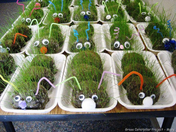 grass-caterpillar-craft-project-001.jpg 1024×768 pixels