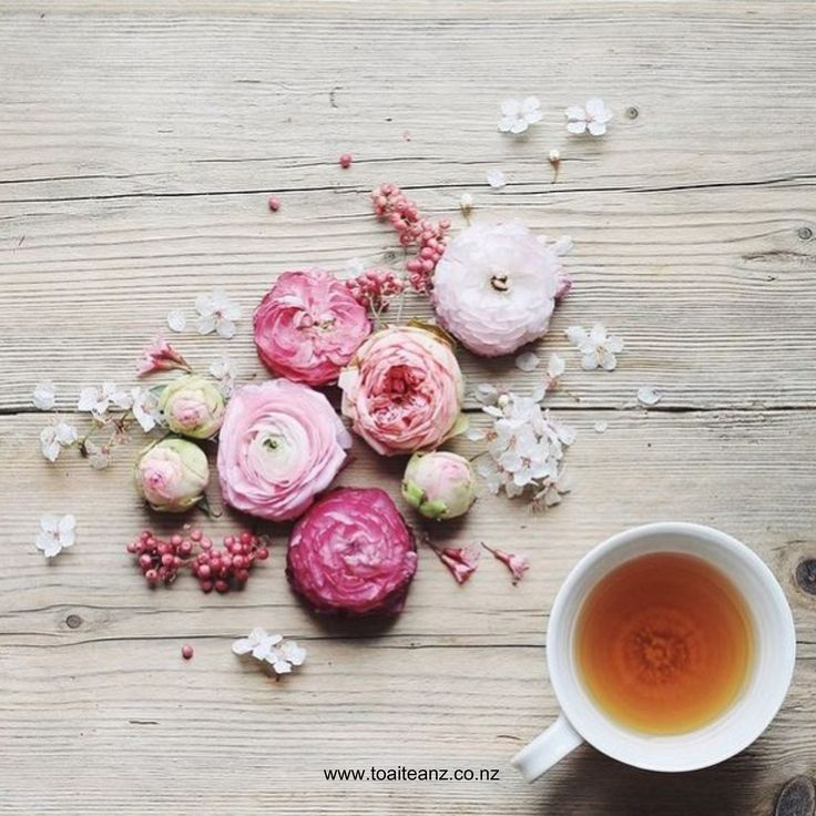 "Feel rejuvenated with Toai Tea's ""Pretty 'n' Pink"" - The beautiful flowers blended together not gives off a lovely aroma, but turns a gorgeous soft pink in your cup  ^SK www.toaiteanz.co.nz"
