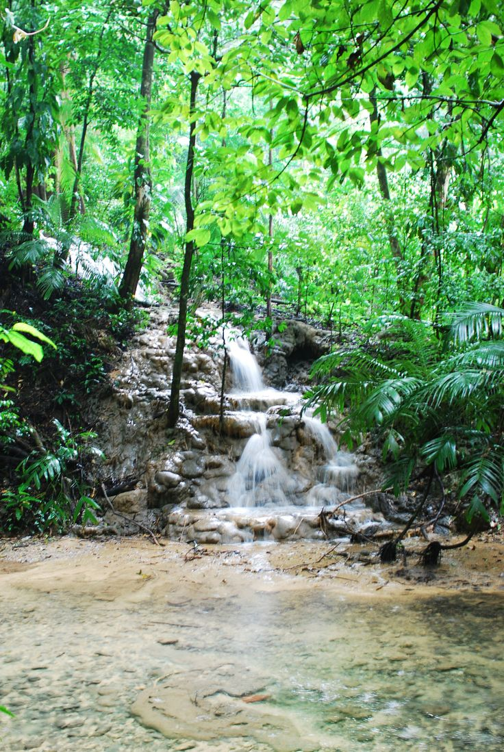 National Park of Palenque Mayan Ruins Chiapas Mexico