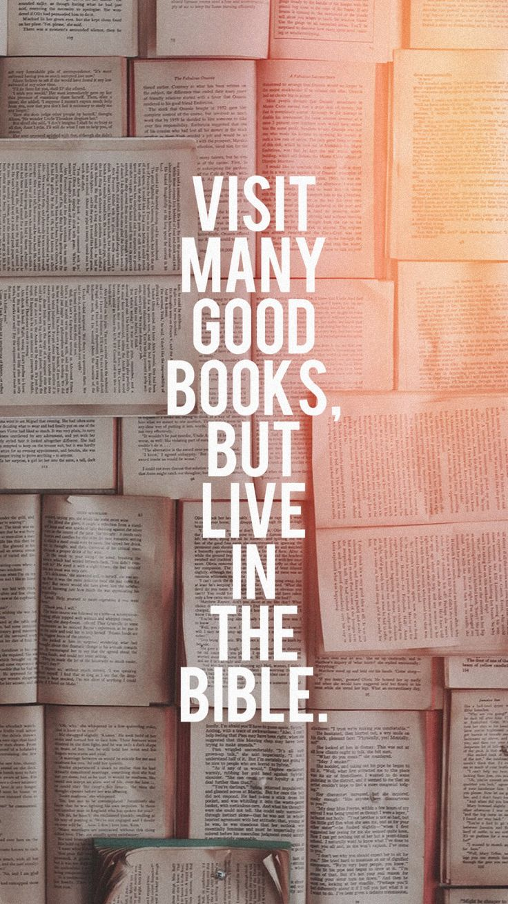 Live in the Bible.