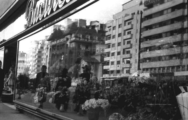 Vitrina florăriei București, la parterul blocului Malaxa.Primăvara anului 1941 foto:Willy Pragher