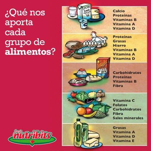 Qu aporta cada grupo de alimentos  Nutricin y Fitness