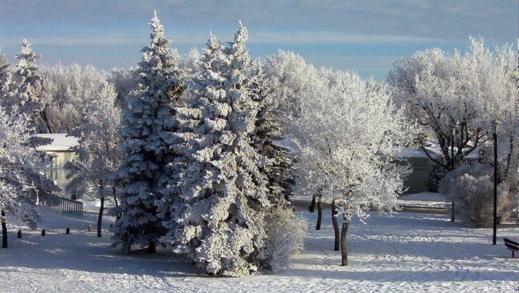 100 Things to Do in Saskatoon This Winter