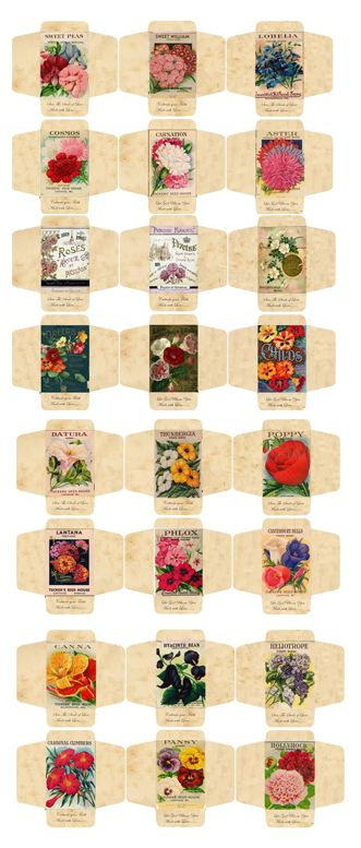 Imprimibles: paquetes de semillas   -   Printables: Seed Packets