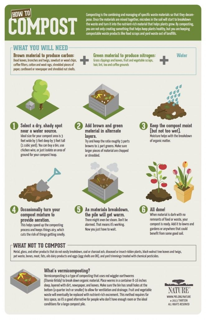 howto compost infographic from pbs