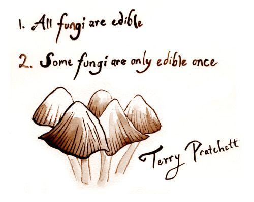 Illustration by https://danamartinillustration.tumblr.com/post/151239418156/inktober-day-2-fungi-advice-from-terry-pratchett