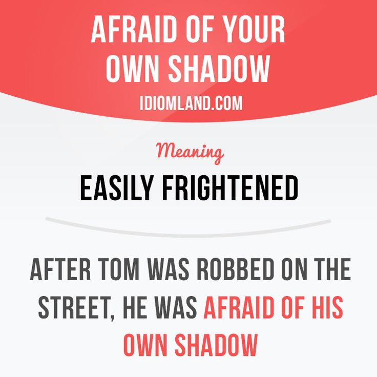 """Afraid of your own shadow"" means ""easily frightened"". Example: After Tom was robbed on the street, he was afraid of his own shadow."